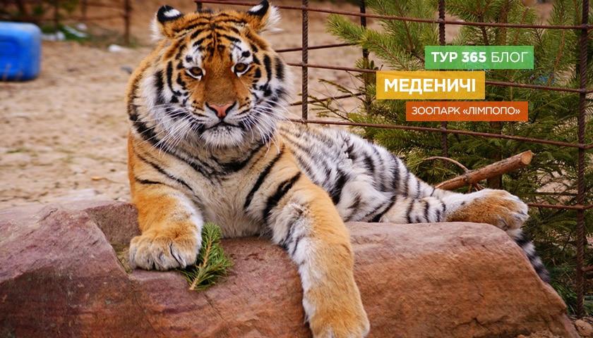 Зоопарк «Лімпопо»
