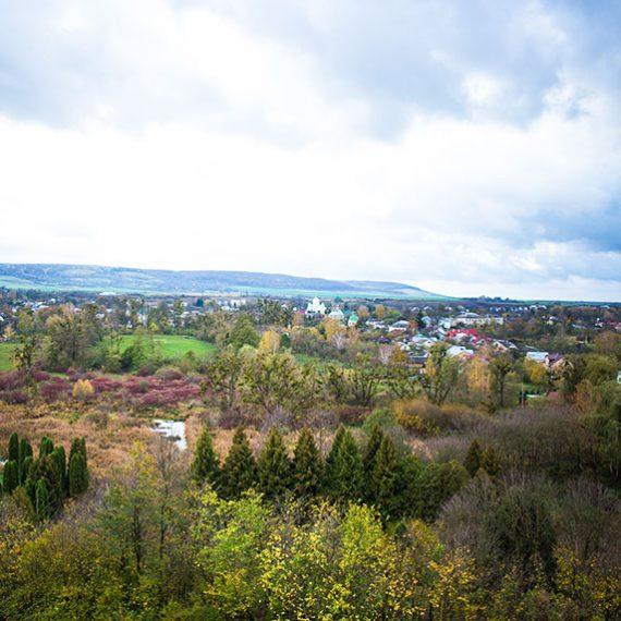 Село Доброгостев