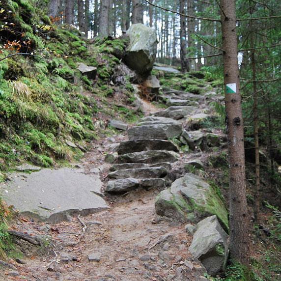 Сходження на гору Маковиця в Карпатах