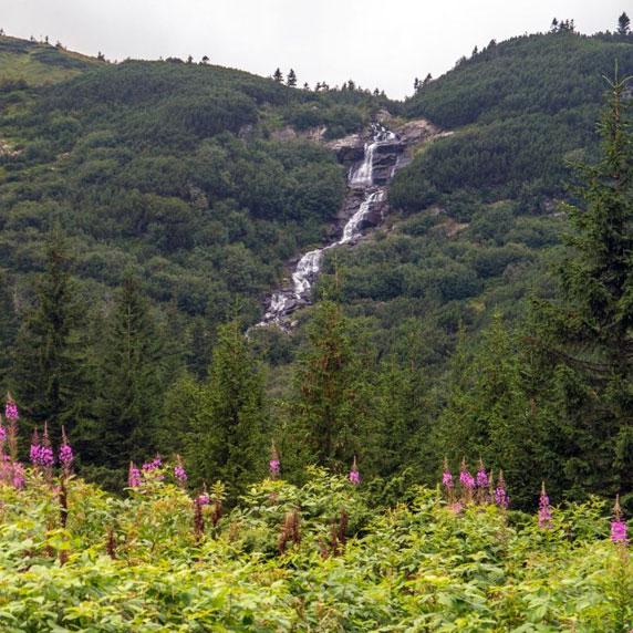 Водоспад біля підніжжя Говерли в Карпатах