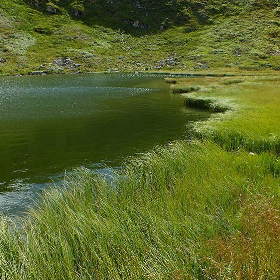 Озеро Несамовите в Карпатах